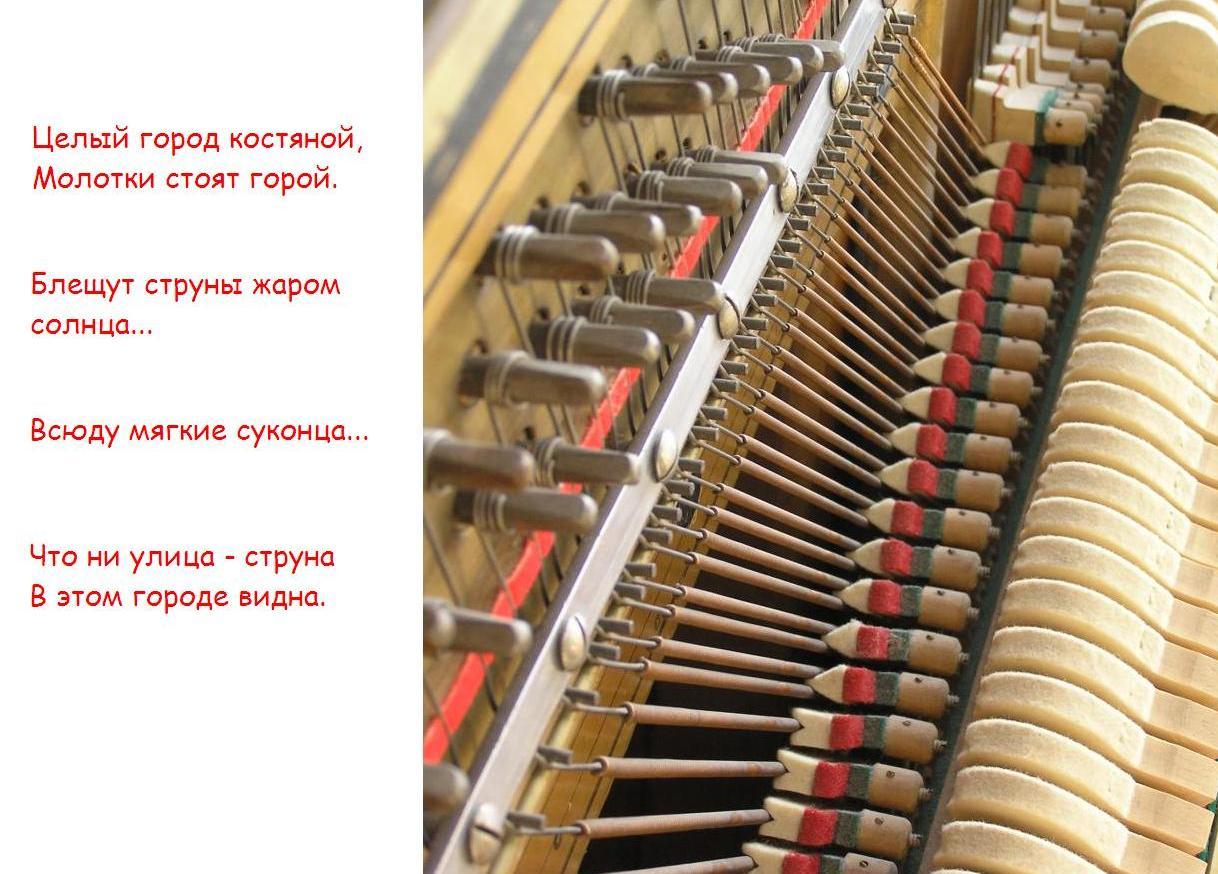 пианино внутри: блещут струны жаром солнца, всюду мягкие суконца...