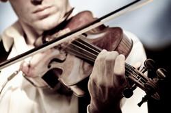 вот так держат скрипку