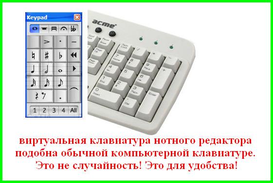 виртуальная клавиатура в программе Sibelius соотносится с обычной клавиатурой компьютера для удобства