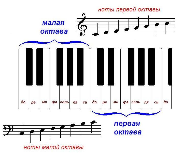 ноты первой октавы, ноты малой октавы