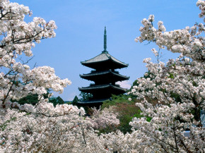 японская народная музыка