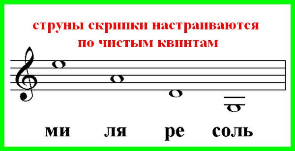 у скрипки четыре струны